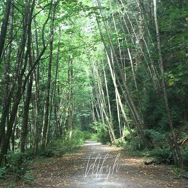 29. Watershed Park to Mud Bay