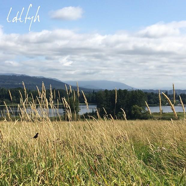 13. Deer Lake